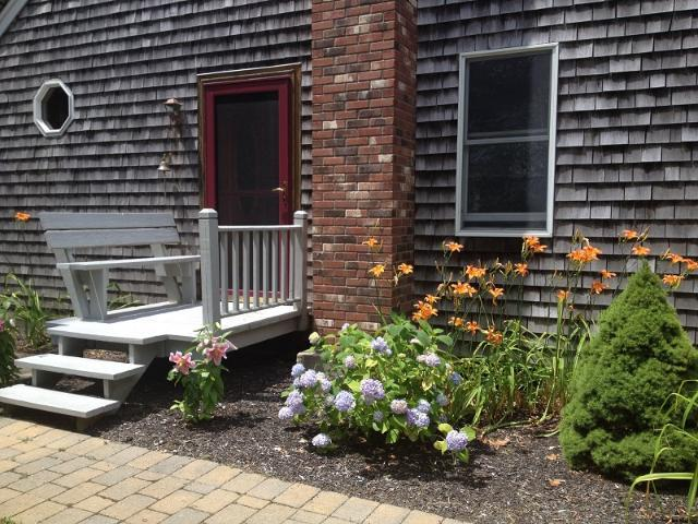 Peaceful and Secluded 3 bdr off Lecount Hollow - Image 1 - Wellfleet - rentals