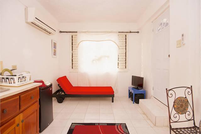 BoHo Flats of Barbican Apt#4 - Image 1 - Kingston - rentals