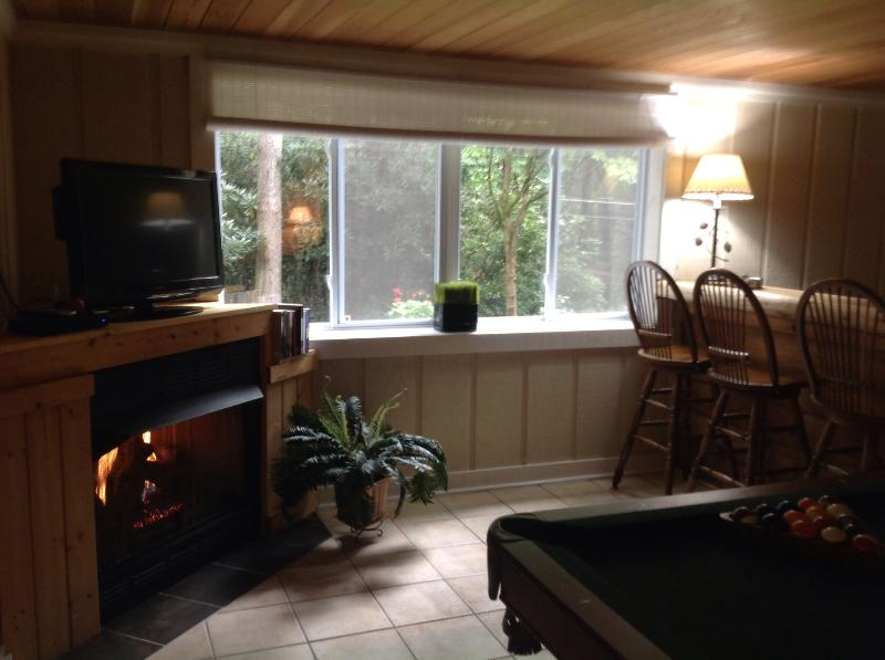 """Game room - """"The Pinecone""""....Charming cottage with pool table - Maggie Valley - rentals"""