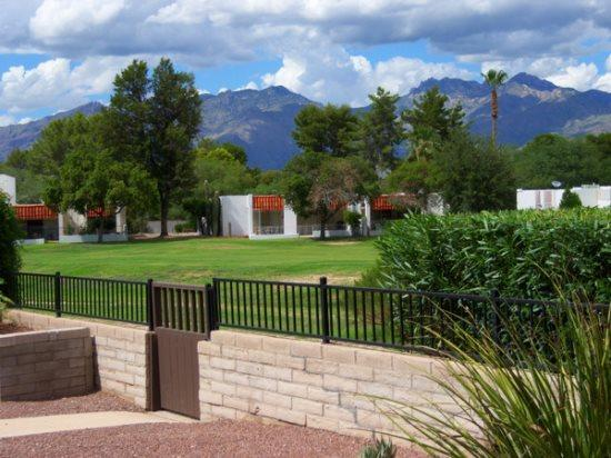 Affordability On A Golf Course - Image 1 - Tucson - rentals