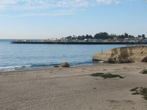301/Seabright *WALK TO BEACH* - 301/Seabright *WALK TO BEACH* - Santa Cruz - rentals