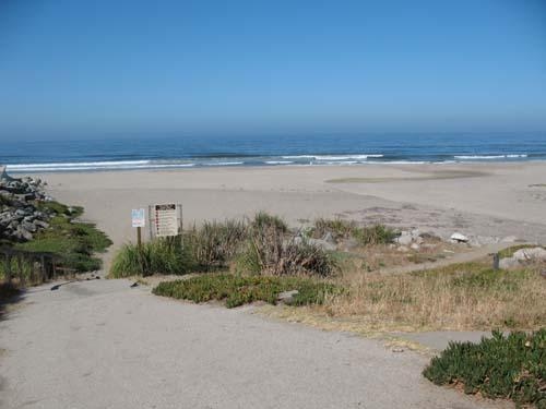 646/Hidden Beach House*WALK TO BEACH/ PARK* - 646/Hidden Beach House*WALK TO BEACH/ PARK* - Aptos - rentals