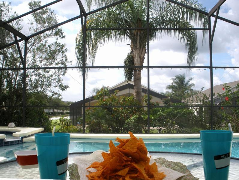Villa Tropical Palms - A Magical Villa for a Perfect Disney Vacation - Davenport - rentals