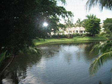View - Bay Pointe in Bonita Bay - Bonita Springs - rentals