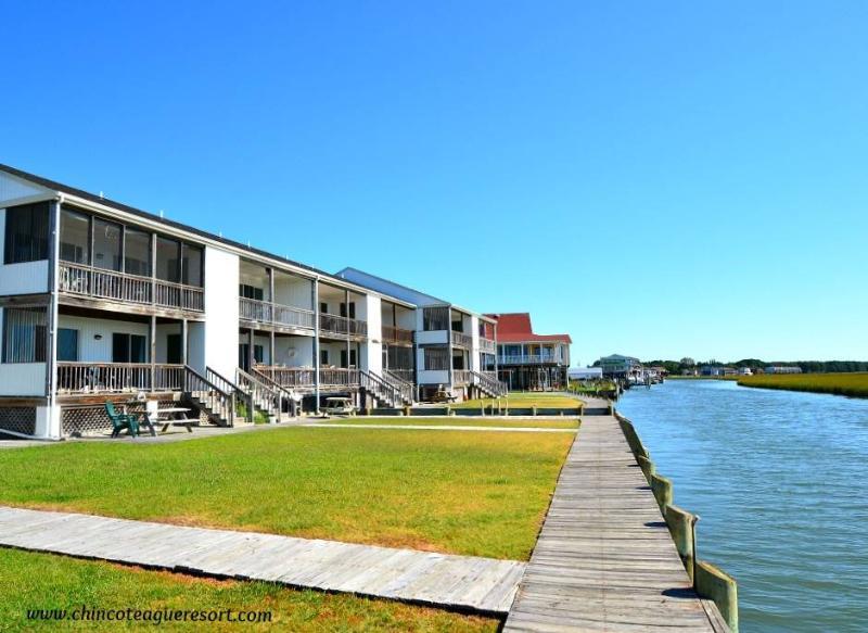 A Wonderview - Image 1 - Chincoteague Island - rentals