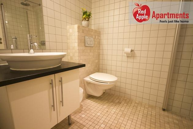 Beautiful 1 bedroom apartment next to Oslo's Frogner Park - 143 - Image 1 - Oslo - rentals