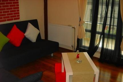 Bright one bedroom apartment in Taksim-Chihangir - 2222 - Image 1 - Istanbul - rentals