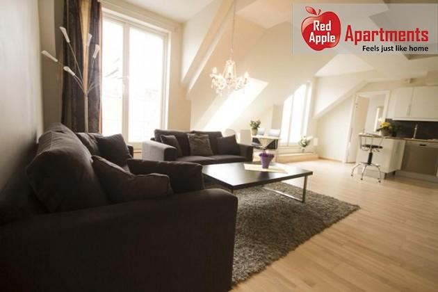Modern Penthouse Apartment in Central Oslo - 6152 - Image 1 - Oslo - rentals