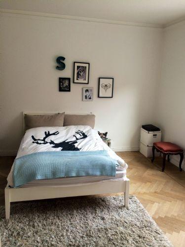 Haraldsgade Apartment - Charming and cozy Copenhagen apartment near Faelled Park - Copenhagen - rentals