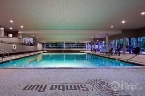 With the largest indoor heated swimming pool in Vail, Simba Run offers Excellent Value, Superior Amenities and World Class Skiing! - Simba Run 2313 - Vail - rentals