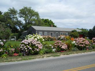 35 Hummock Pond Road - Image 1 - Nantucket - rentals