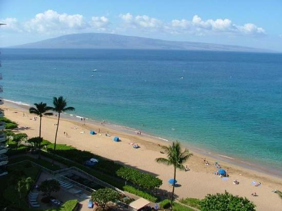 Incredible ocean views! - Whaler 1111 - One Bedroom, Two Bath Ocean View Condominium - Lahaina - rentals