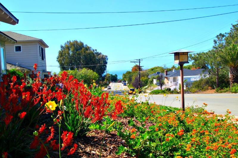In the front garden looking down the street to the ocean. - Muirlands - La Jolla Home w/ Beautiful Garden - La Jolla - rentals