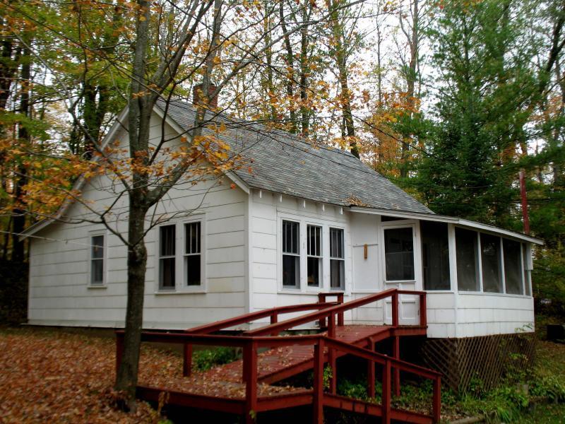 Lakeside first cabin - Lakeside first cabin - Hayward - rentals