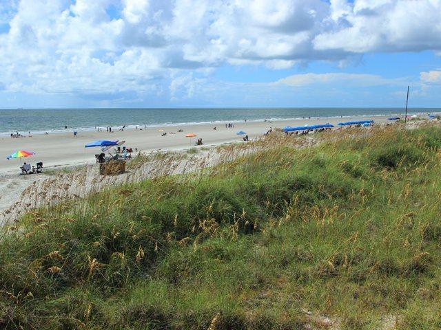 Beach at Palmetto Dunes - Captain's Cove, 498 - Hilton Head - rentals