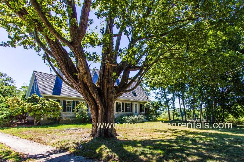 Front of Arrowhead Farm House - DOUGC - Historic, Arrowhead Farm, Wifi, Some A/C - West Tisbury - rentals