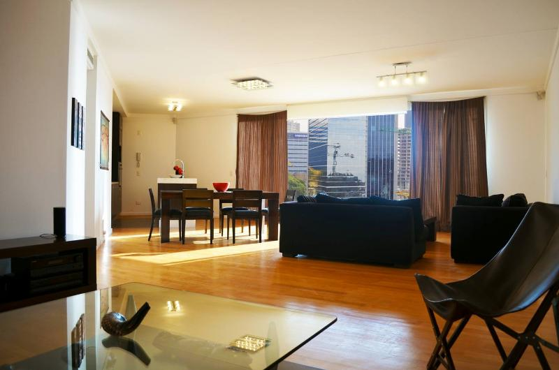 Spacious & Modern 2 Bedroom Apartment in Puerto Madero - Image 1 - Buenos Aires - rentals