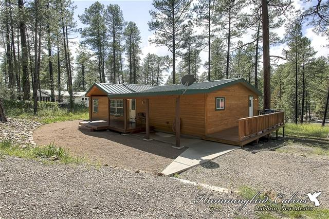 Virginia Canyon Cabin 650 - Image 1 - Ruidoso - rentals