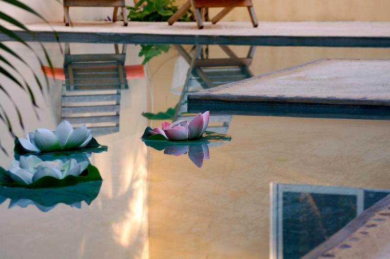 Relax At Villa Clarita Tulum - Image 1 - Tulum - rentals