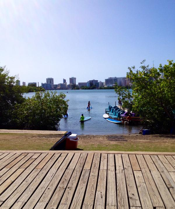 Fun at the lagoon park - Affordable Luxury by the Condado Lagoon - San Juan - rentals