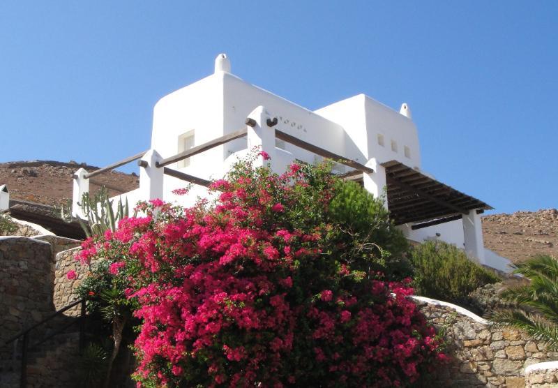 Beautiful Mykonos Villa  - Villa Argos - Image 1 - Mykonos - rentals