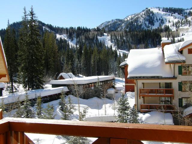 Sunny Slope Views! - Powderhorn Lodge #405 - Solitude - rentals