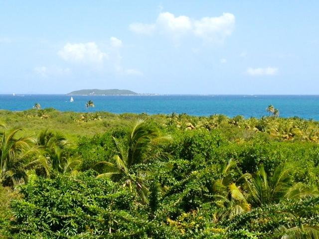 Amazing Sea Views Breezes Private Apt with AC - Image 1 - Fajardo - rentals