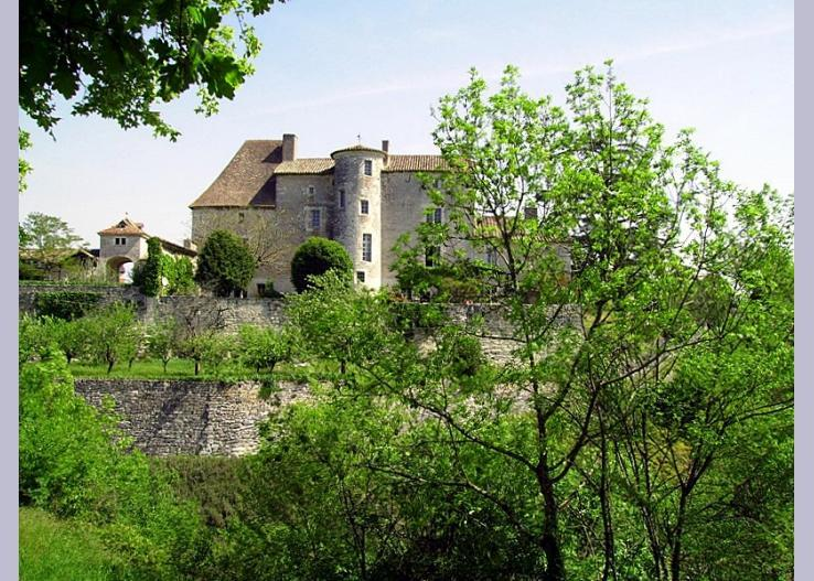 france/midi-pyrenees/chateau-dax-entire-estate - Image 1 - Bagat En Quercy - rentals