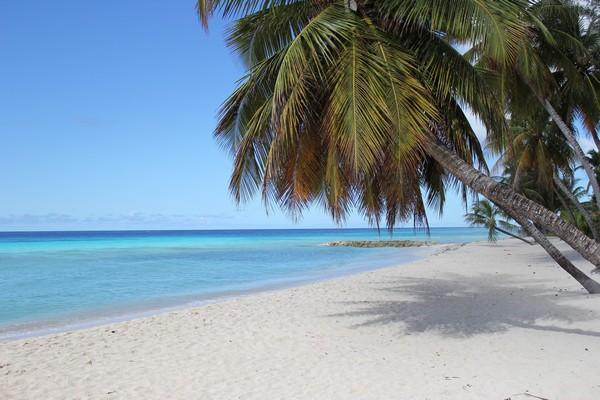 Closest beach about 100 meter / yard away from Michelin Apartments. - Barbados cheap holiday apartment  AC  2 min. beach - Dover - rentals