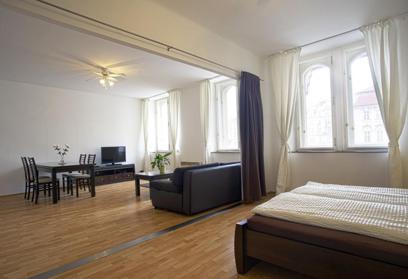 2 BDR APARTMENT OLD TONW SQUARE - Image 1 - Prague - rentals