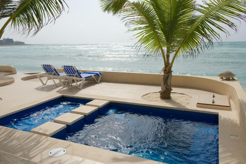 Private pool has a deep side and a shallow side with a bubbler-ideal for children! - Casa Elangeni Half Moon Bay | on the beach in Nort - Akumal - rentals