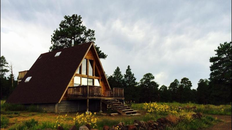 View from the private road - A-Frame Mountain View Cabin in a National Forest - Flagstaff - rentals