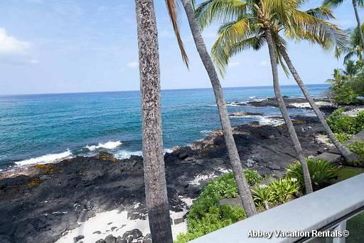 K4-HALEKAI4 - Image 1 - Kailua-Kona - rentals