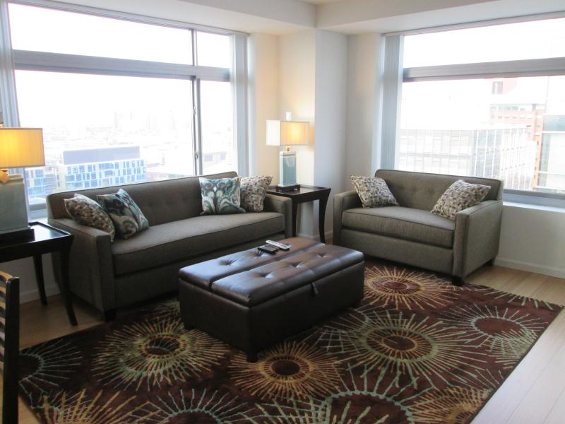 Living room - Lux 2BR Cambridge Apt by MIT - Cambridge - rentals