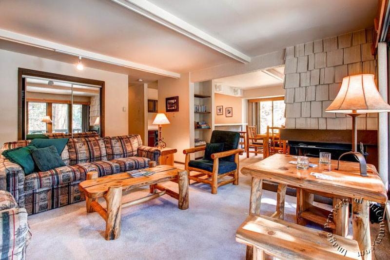 Tannenbaum by the River 101 by Ski Country Resorts - Image 1 - Breckenridge - rentals