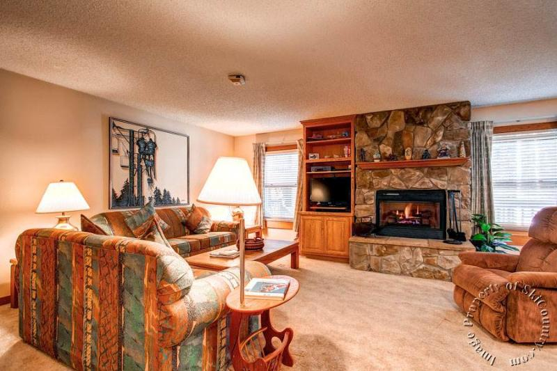 Tannenbaum 12 by Ski Country Resorts - Image 1 - Breckenridge - rentals