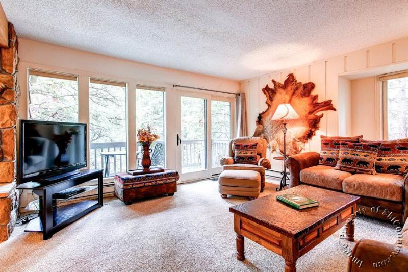 Tannenbaum by the River 206 by Ski Country Resorts - Image 1 - Breckenridge - rentals