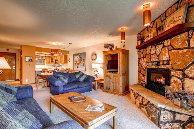 The Atrium 105 by Ski Country Resorts - Image 1 - Breckenridge - rentals