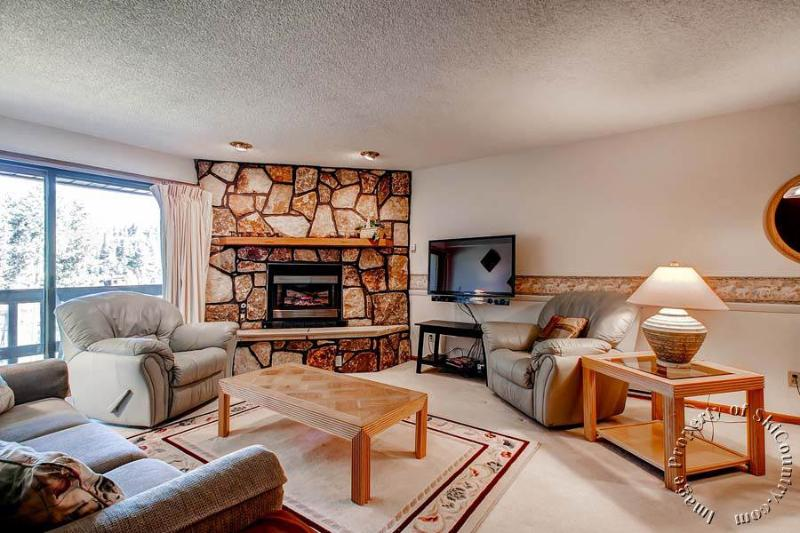 The Atrium 206 by Ski Country Resorts - Image 1 - Breckenridge - rentals