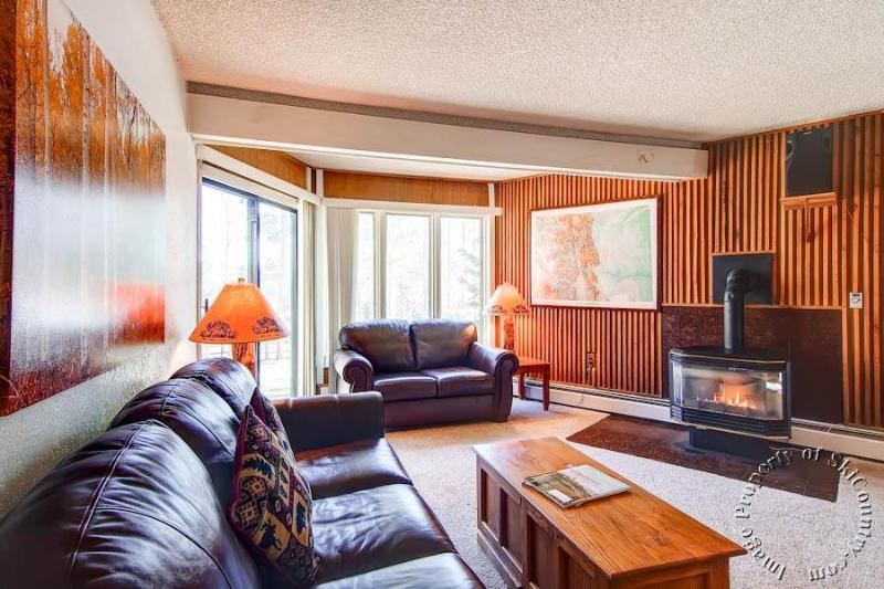 Gold Camp Condos 146 by Ski Country Resorts - Image 1 - Breckenridge - rentals