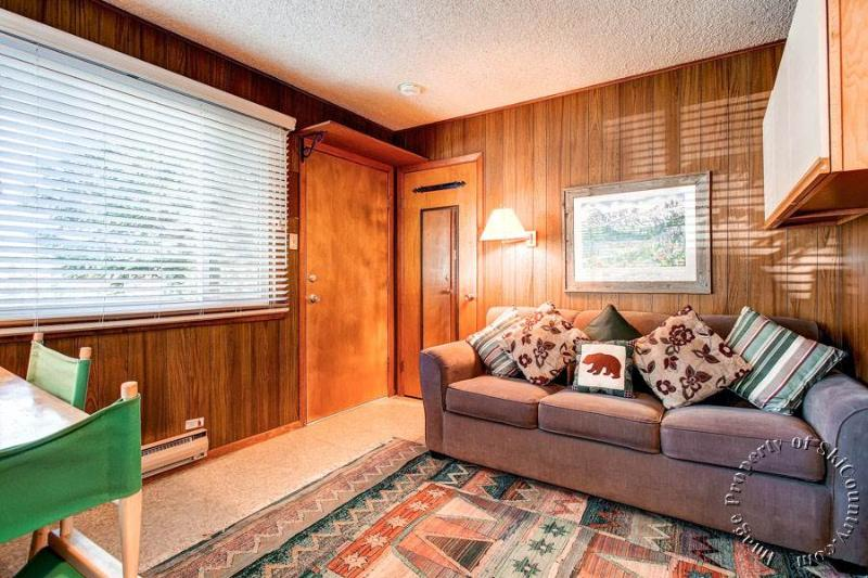 Park Meadows Lodge 4A by Ski Country Resorts - Image 1 - Breckenridge - rentals