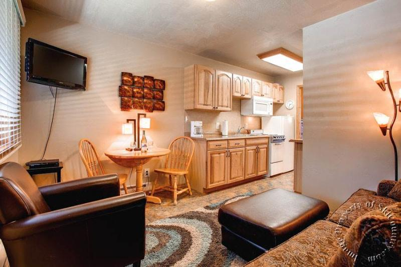 Park Meadows Lodge 7C by Ski Country Resorts - Image 1 - Breckenridge - rentals