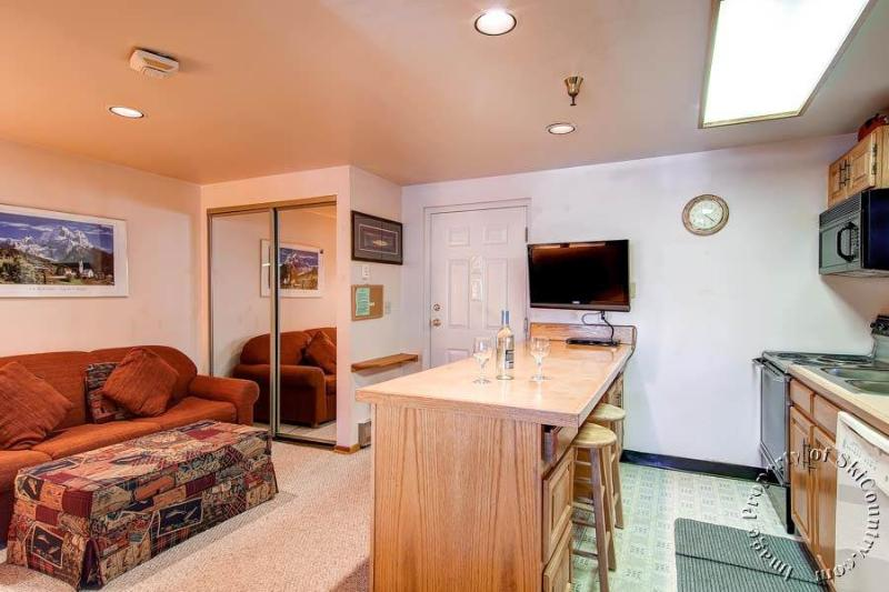 Tyra Lookout 14 by Ski Country Resorts - Image 1 - Breckenridge - rentals