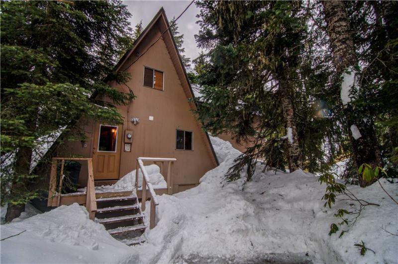 Alpine Hideaway - Image 1 - Government Camp - rentals