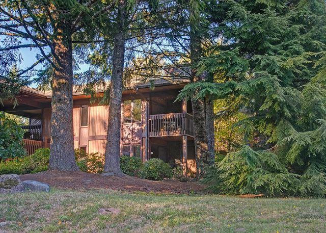 ShadowHawk #5 - Fireplace, Hot Tub, Dogs Welcome - Image 1 - Oregon - rentals