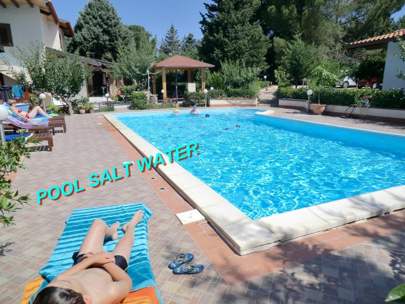 SAPPHIRE HOME,SPECIAL PRICE X 2,PALERMO,POOL SALT WATER - Image 1 - Balestrate - rentals