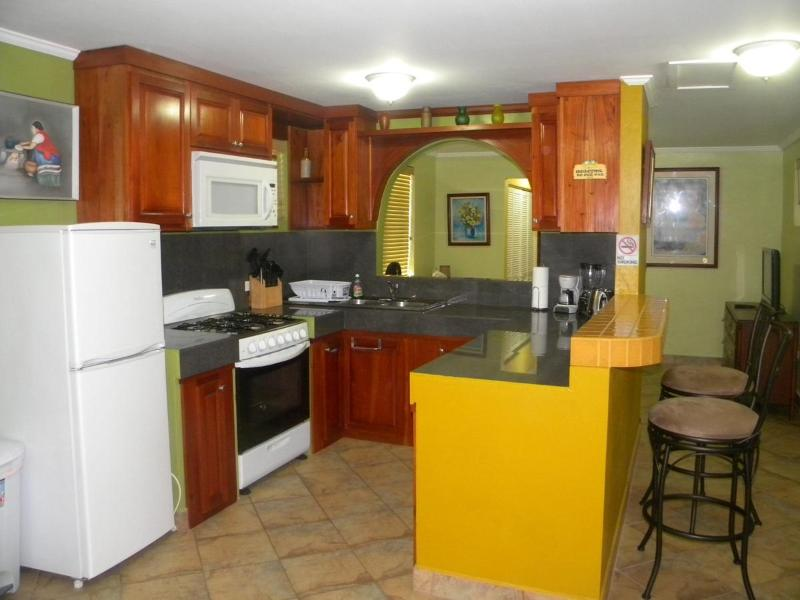 Kitchen - Modern Studio Apartment For Rent - Belize City - rentals