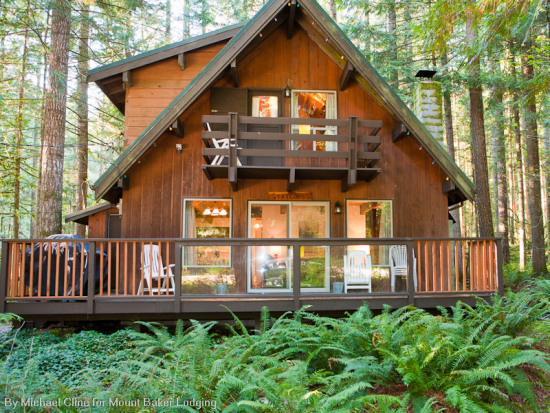 27GS - 27GS Pet Friendly Cabin Near Mt. Baker with WiFi - Glacier - rentals