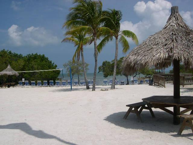 Private Oceanfront Swimming Beach - 2/2 W/Direct Ocean Views - Ocean Front Beach Resort - Free Secured WiFi! - Key Largo - rentals