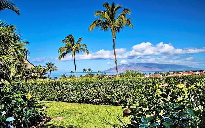 Maui Kamaole 1 Bedroom Ocean View L104 - Maui Kamaole 1 Bedroom Ocean View L104 - Kihei - rentals